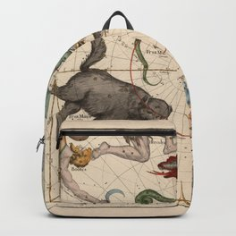 Pictorial Celestial Map with Constellations Ursa Major and Ursa Minor Backpack