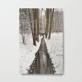 Stream and trees in winter Park Metal Print