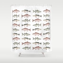 Pattern: Inshore Slam ~ Redfish, Snook, Trout by Amber Marine ~ (Copyright 2013) Shower Curtain