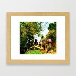 Elephant Trail Framed Art Print