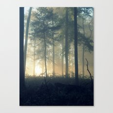 Breakthrough Canvas Print