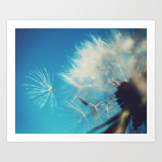 Dandelion Photograph Art Print