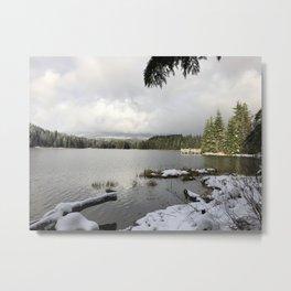 Lake V Metal Print