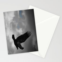Young Bald Eagle Stationery Cards