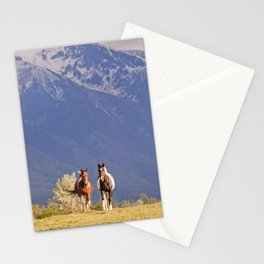 Paint Horses and Western Landscape Photograph Stationery Cards