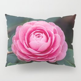 Pink Perfection Camellia Japonica Spring Bloom Pillow Sham