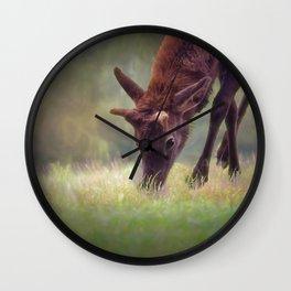 Young Elk Grazing Wall Clock