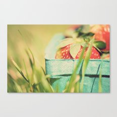 strawberry fields forever ...  Canvas Print