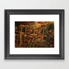 Autumn Tint of Gold Framed Art Print
