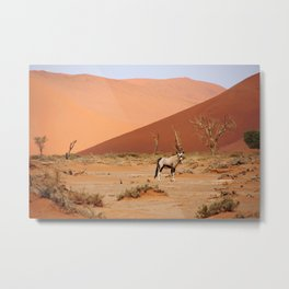 NAMIBIA ... Sossusvlei Oryx II Metal Print