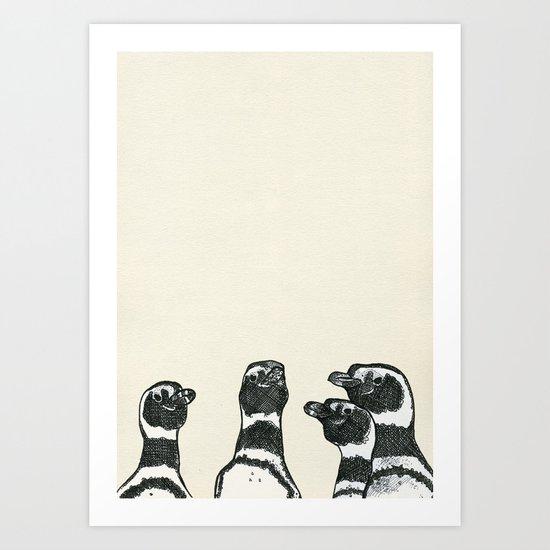 Magellanic Penguins Art Print
