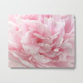 Enchanting - Abstract Pastel Pink Peony Flower Photo Metal Print