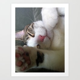 Best Cat that ever lived Art Print