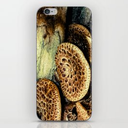Fungi in the Woods iPhone Skin