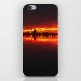 HOPEWELLS VAS RED DELIGHT iPhone Skin