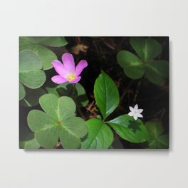 Forest Flowers Metal Print
