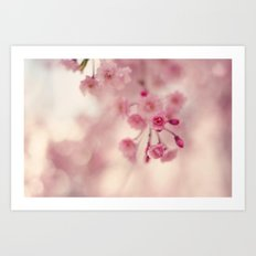 Weeping Willow Flowers Art Print