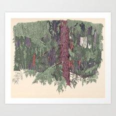 Weeping Cedar Art Print