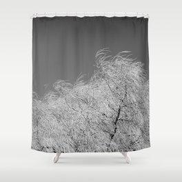 Spring Breeze, Port Hope, Ontario Shower Curtain
