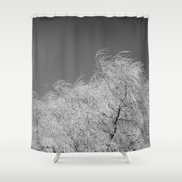 Spring Breeze, Port Hope, Ontario Shower Curtain