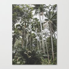 In the Jungle - Hawaii Canvas Print
