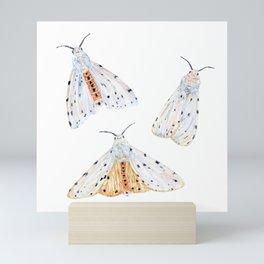 Salt Marsh Moths Mini Art Print
