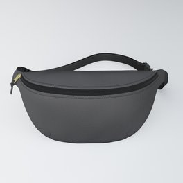 Simulated Black Carbon Fiber Fanny Pack