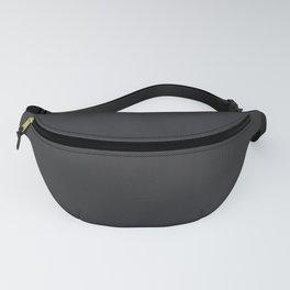 Simulated Black Carbon Fiber Fanny Pack