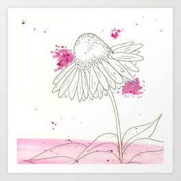 Echinacea Magic Art Print