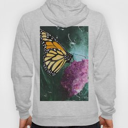 Butterfly - Soft Awakening - by LiliFlore Hoody