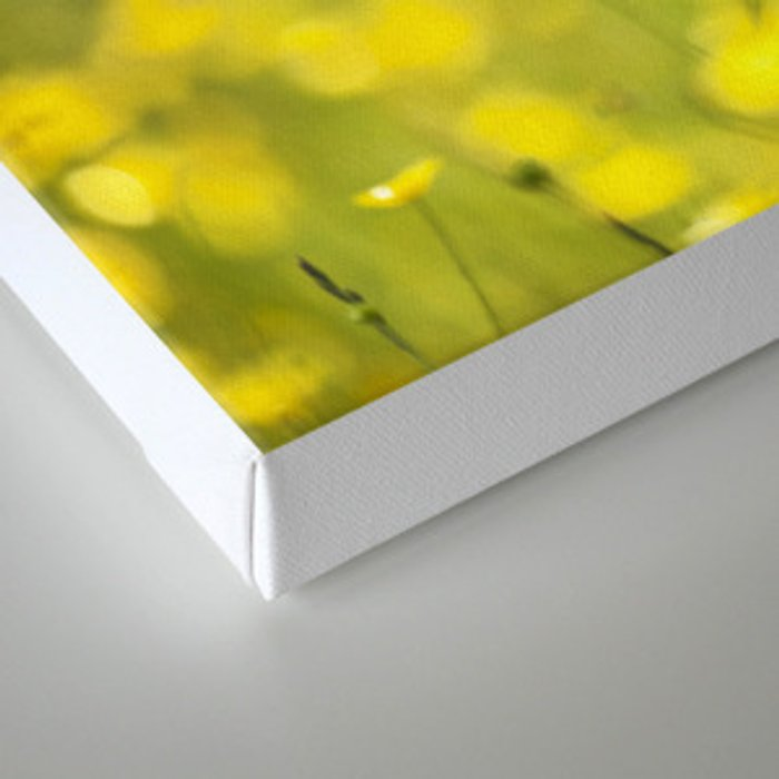 Summer Yellow Canvas Print