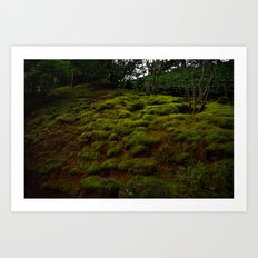 WINTER MOSS Art Print
