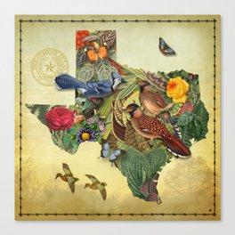 Texas Map Canvas Print