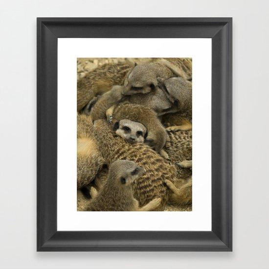Meerkat overload Framed Art Print