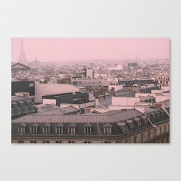 zinc rooftops of Paris Canvas Print