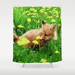 Baby Red Fox in Green Field With Yellow Flowers Shower Curtain
