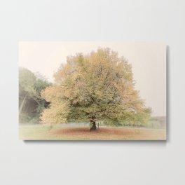My Favourite Tree Metal Print