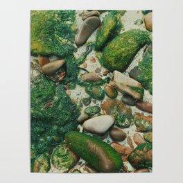Moss-Covered Rocks in Isle of Skye, Scotland Poster