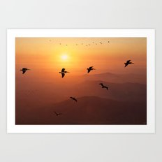Pelican Migration Art Print