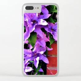 Beautiful purple flowerbush on the wall Clear iPhone Case