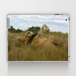 Lazy Lion Laptop & iPad Skin