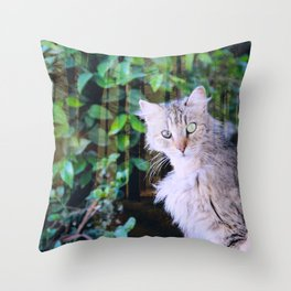 Cat to Rule the World with Throw Pillow