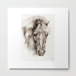 Pony portrait pencil drawing Metal Print