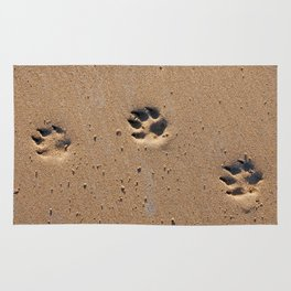 Dog paw prints on a sandy beach Rug