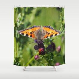 Little Tortoiseshell Buterfly Shower Curtain