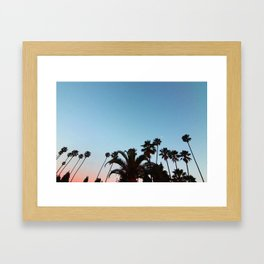 Summer Palms, Hollywood.  Framed Art Print