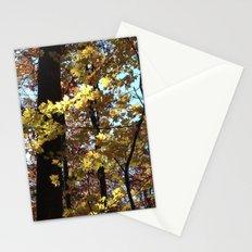 Autumn Light II Stationery Cards