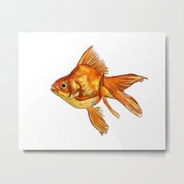 Gold Fish Painting Wall Art Metal Print