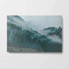 Swiss Fog VI Metal Print