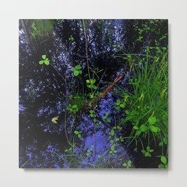 Floor of Sifton Bog Metal Print